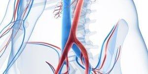 Vascular Arterial Ultrasound (from £100) London